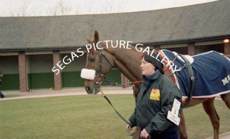 Beef Or Salmon with Jockey Paul Carberry